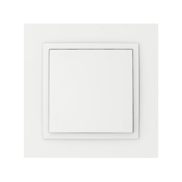 INELS 90910 TBB SIGLE FRAME WHITE Switches and Sockets